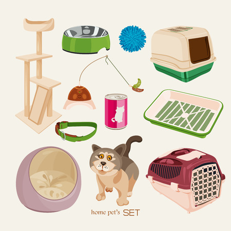 puppy and kitten: Some cute vector stuff for pets