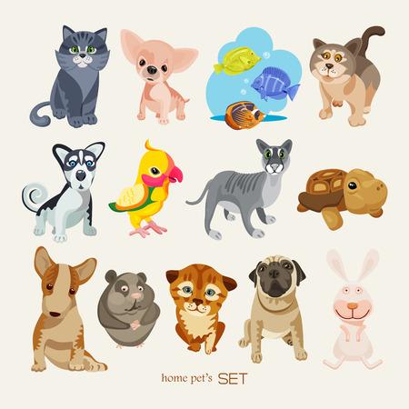 british: Set of pets
