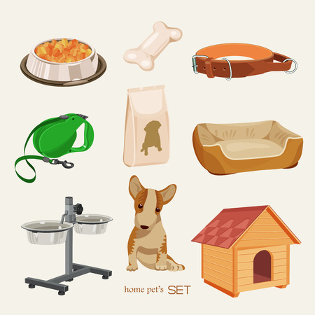 pet shop: Some cute vector stuff for pets
