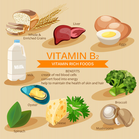 rich in vitamins: Vitamin B2. Vitamins and minerals foods. Vector flat icons graphic design. Banner header illustration.