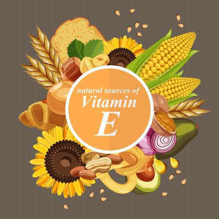 Grupa zdrowych owoców, warzyw, mięsa, ryb i produktów mlecznych zawierających określone witaminy. Witamina E. Ilustracje wektorowe