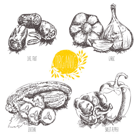 dates fruit: Collection of hand-drawn organic vegetables, fruit, foods. Vector illustration in vintage style.
