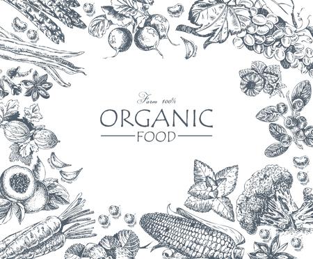 有機食品。野菜、果物、スパイスのセットです。ファームの食事。ポスター。メニュー  イラスト・ベクター素材