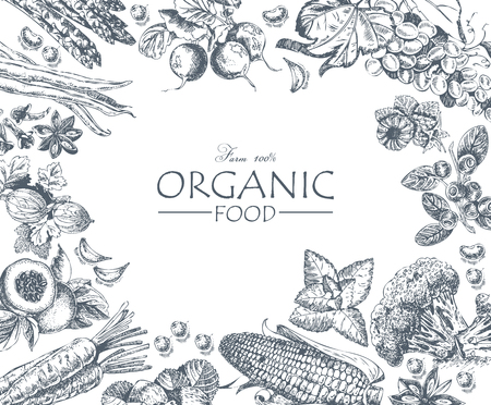 Organic food. Set of vegetables, fruits and spices. Farm meal. Poster. Menu