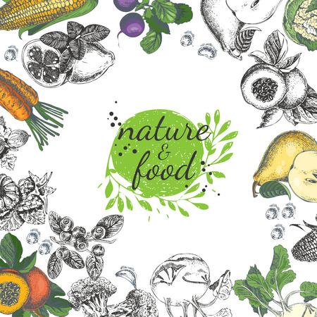 Cartel de la naturaleza de los alimentos. Marco de la vendimia con la fruta, las verduras en estilo de época. Boceto de fondo.