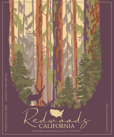 Parc de séquoias en affiche colorée de vecteur de Californie. Parcs d'État. Les arbres les plus hauts du monde.