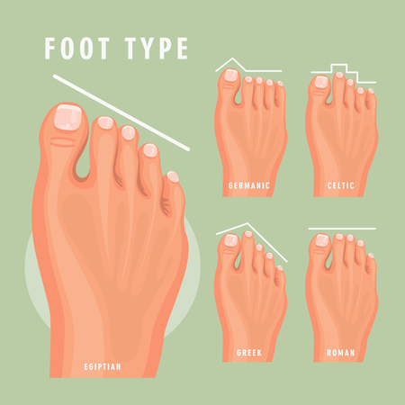Foot type vector detailed concept with germanic, celtic, greek and roman form Иллюстрация