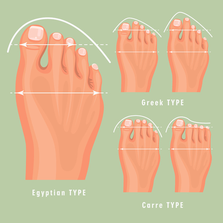 Foot type vector detailed concept with germanic, celtic, greek and roman form Illustration
