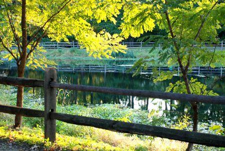 Beautiful lake with fence background photo