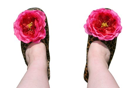 A womans feet  wearing tacky leopard fur slippers with big fake flowers on them. Isolated. photo