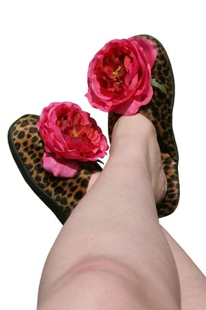 tacky: A womans legs, crossed.  She is wearing tacky leopard fur slippers with big fake flowers on them. Isolated.