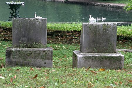 dead duck: tombstones beside a pond with swans swimming by