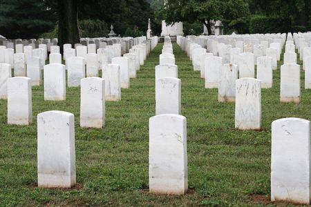 rows of tombstones in a military graveyard Banco de Imagens - 218858