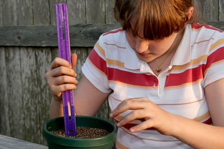 A young girl measuring the soil before planting seeds for a school science project.