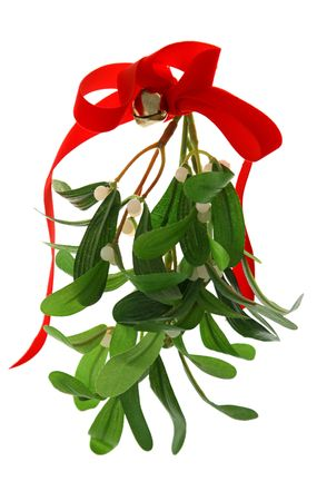 beneath: Christmas mistletoe with a red bow and a bell, isolated against a white background.