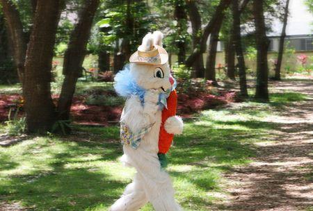 arbol de pascua: Una foto de la Semana Santa Bunny en funcionamiento por su manera de esconder los huevos. Foto tomada mientras que la panor�mica para mejorar la acci�n.