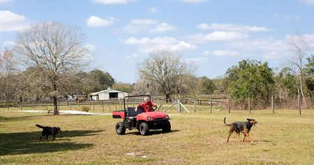 Banner of a farmer riding his off-road vehicle around his property with his dogs running along. photo