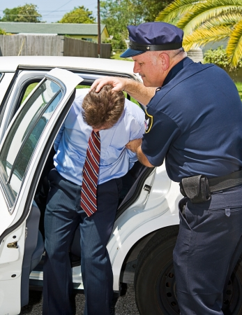 Criminal handcuffed and being shoved in the back of a squad car by a police officer.   photo