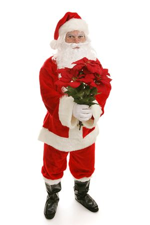 Santa Claus holding a bouquet of Christmas poinsettia flowers.  Full body isolated on white.   photo