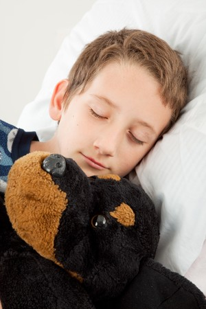 Adorable little boy sound asleep beside his stuffed animal photo