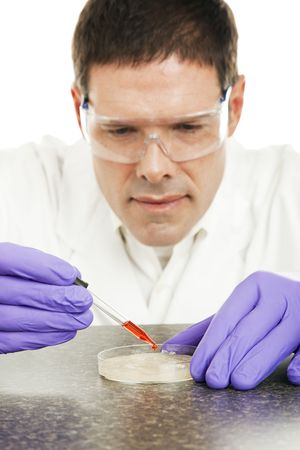 safety googles: Scientist dropping biological liquid into a petri dish for culture.  Closeup with focus on liquid in dropper.