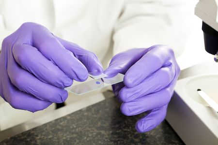 Closeup of scientist's hands as he prepares a slide for the the microscope.