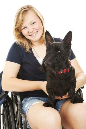 スコッティ犬を保持している車椅子の美しい十代の少女の肖像画。白い背景。
