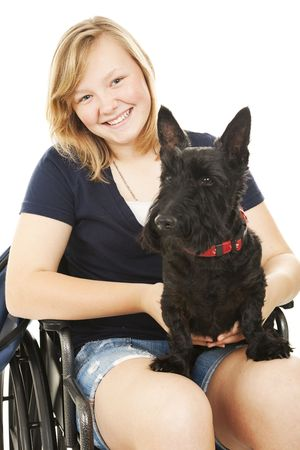 handicapped person: Portrait of a beautiful teen girl in a wheelchair holding her Scotty dog.  White background.