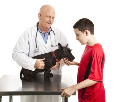 Teen boy takes his dog to the veterinarian.  Isolated on white. photo