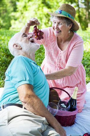Senior couple on a romantic picnic in the park.  She is feeding him grapes. photo