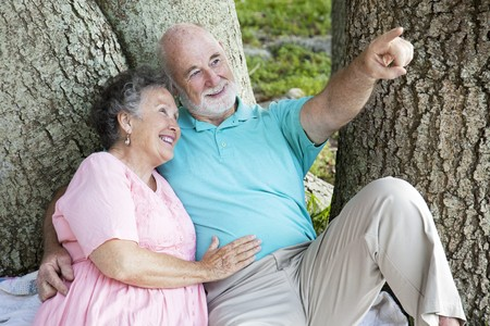 Senior man points out a bird to his wife as they relax in the park. Stock Photo - 7906272