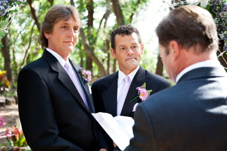 interracial marriage: Handsome gay male couple getting married by a minister in beautiful outdoor setting.