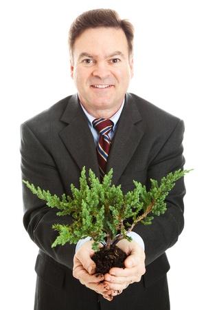Businessman holding a bonsai tree, symbolizing partnership between business and environment.   photo
