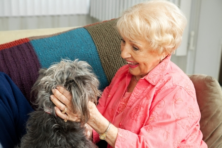 Beautiful senior lady pats her adorable mixed breed dog.   photo