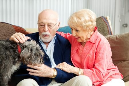 zooth�rapie: Couple de personnes �g�es � la maison avec leur chien adorable petite miteux.