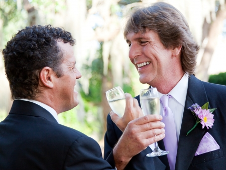 homosexual partners: Handsome couple at their wedding, toasting with champagne.
