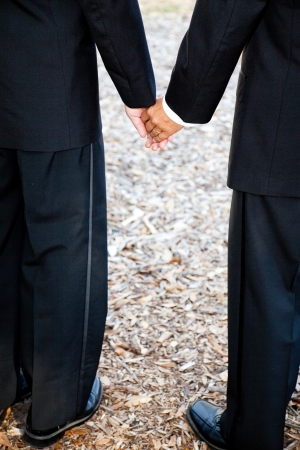 homosexual partners: Closeup view of interracial couple getting married in tuxedos and holding hands.