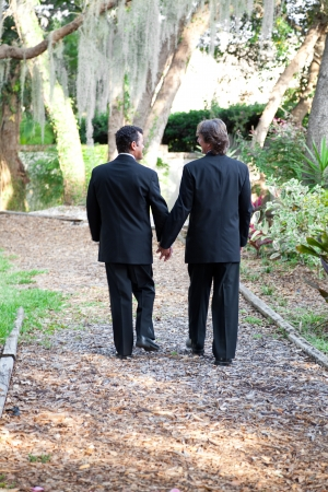 interracial marriage: Two gay male grooms walking hand in hand down a garden path together.  Symbolizes the pathway of life.  Some motion blur on legs as they are actually walking. Stock Photo