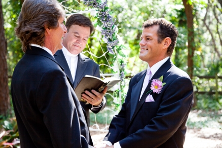 Handsome gay couple getting married in beautiful outdoor ceremony    photo