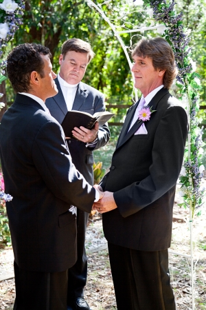 Handsome gay couple getting married outdoors in the park    photo