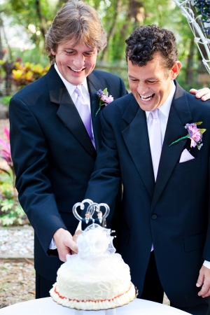 Two happy grooms cutting the cake at their wedding.   Stockfoto