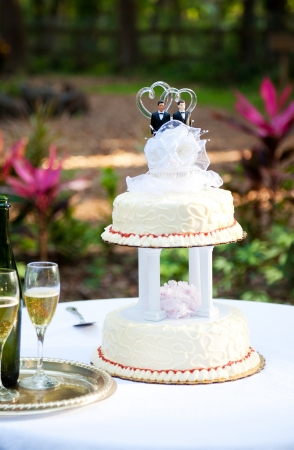 topper: Wedding cake and champagne set up on a table in the garden.  Two grooms are on top of the cake.