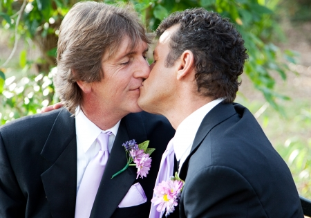 Handsome gay male couple kissing in the park on their wedding day.   Banco de Imagens