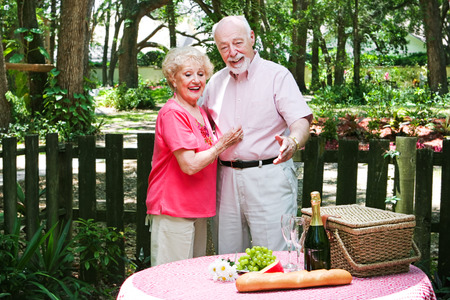 Senior husband surprises his wife with a romantic picnic. Stock Photo - 28559073