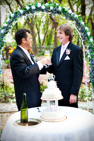 Two handsome gay grooms toast their marriage with champagne.   photo