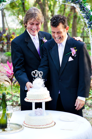 Two handsome grooms cut the cake at their gay marriage ceremony.   photo