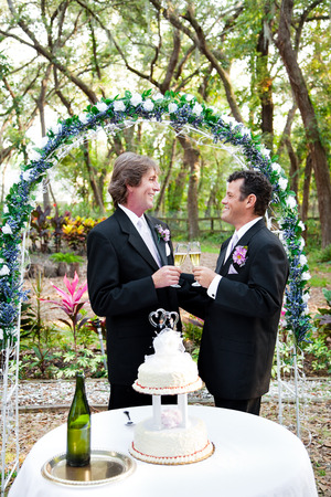 Happy handsome gay couple toasting with champagne under floral wedding arch. Wedding cake with two grooms in foreground.