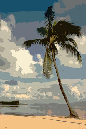 palm tree Zdjęcie Seryjne