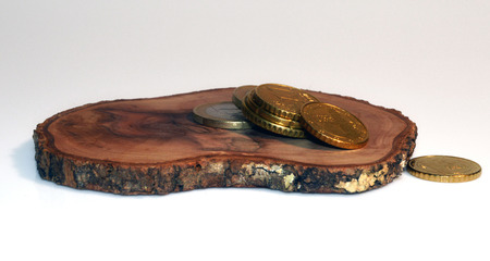 tree disc: wooden disc with coins on white background