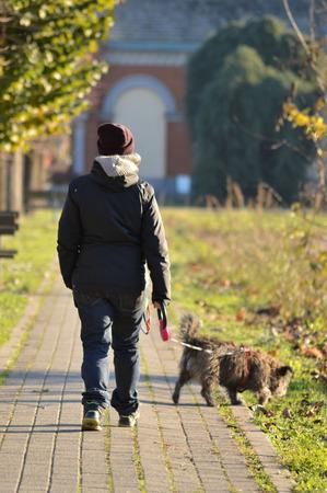 sitter: dog sitter girl walking in the street Stock Photo